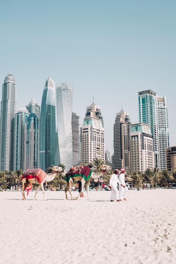 dental hygienists abroad Dubai Traveling Hygienist Spotlight